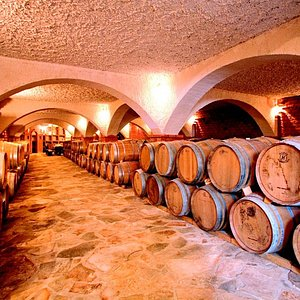 Matusko Winery- interior