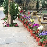 Beautiful gardens and outdoors of Samode Haveli