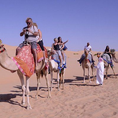 For Desert Tours contact us at: Tel : +971 2 44 88 66 8 Hotline : +971 50 80 999 87