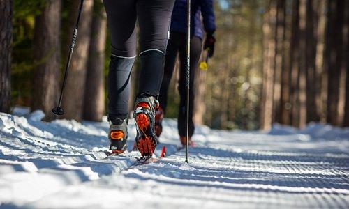 Venez découvrir nos sentiers de ski de fond!