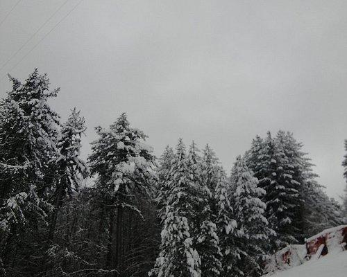 Calabria Snow Academy