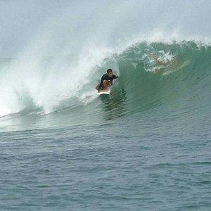 カデ サーフィン