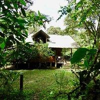 Las Tangaras Lodge