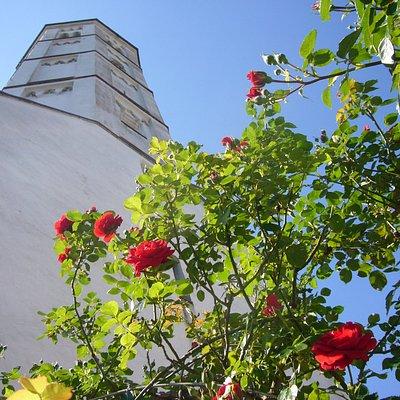 Foto der Andreaskirche von unten im Sommer.