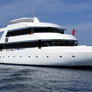Venez passer des vacances en croisière plongées sur notre superbe bateau tout confort : l'Equato