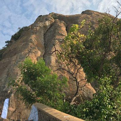 Marunthu vazh malai - The last peak of Western Ghats