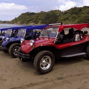 Enjoy the beautiful beachs located around the Flamingo area during our Monkey Buggy Beach Tour.