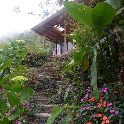 More of the wonderful garden at Cassita Blanca