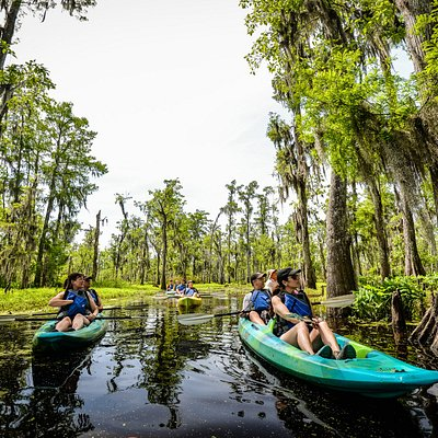 enjoying the kayak swamp tour