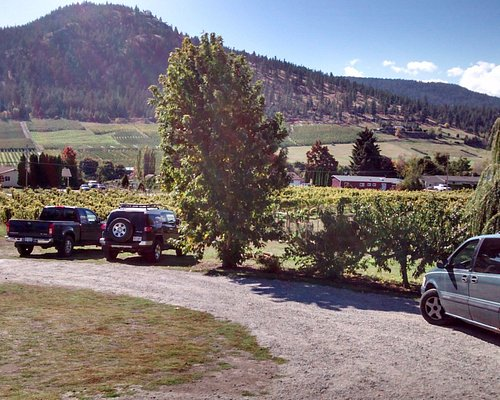 View from tasting room