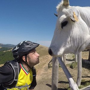Here I am, getting up close and personal with some friends on the mountain!