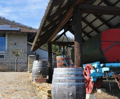 Azienda Agricola Mario Torelli