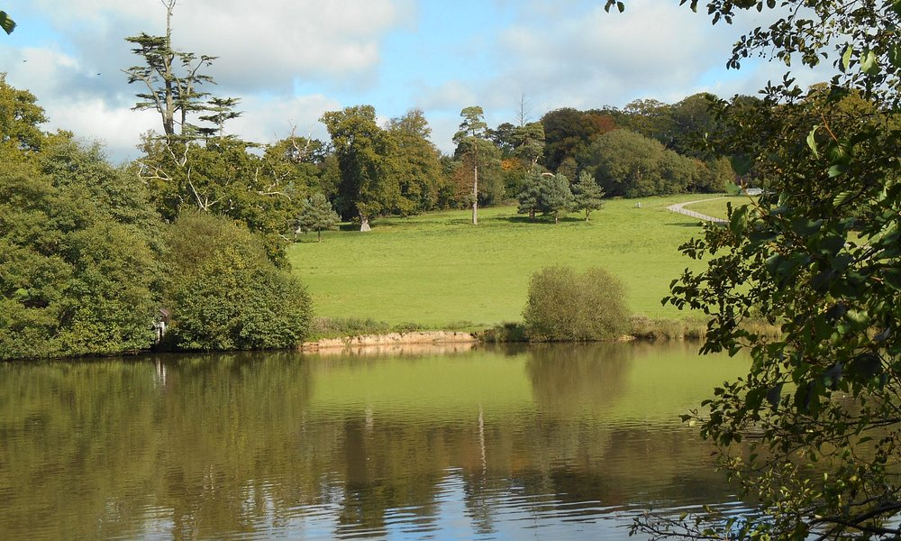Shobrooke Park - the lovely lake.