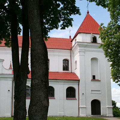 Church of the Assumption of the Blessed Virgin Mary | Raseiniai, Litouwen