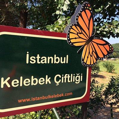 İstanbul kelebek çiftliğ tabelası