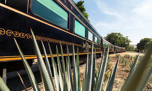 Tren Jose Cuervo Express