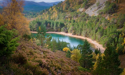 An Lochan Uaine (The Green Lochan), Glenmore Forest Park, Aviemore. © VisitScotland/Damian Shiel