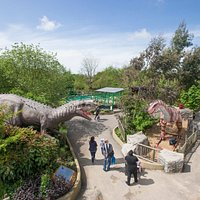 Discover animatronic dinosaurs across the park