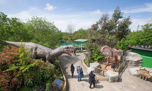 Discover animatronic dinosaurs across the park