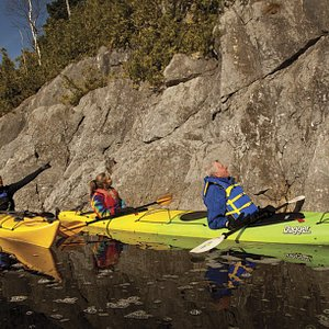 Dominion Park with Go Fundy Events - Kayak tour