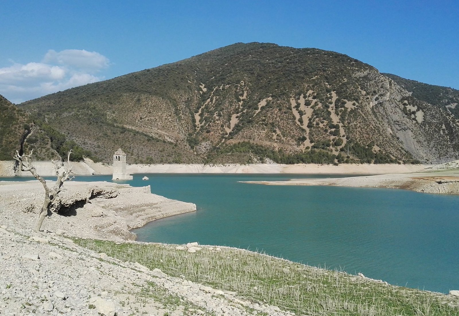 lac mediano