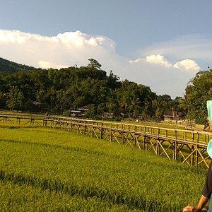 Jembatan Sukorame -rilannuuri-