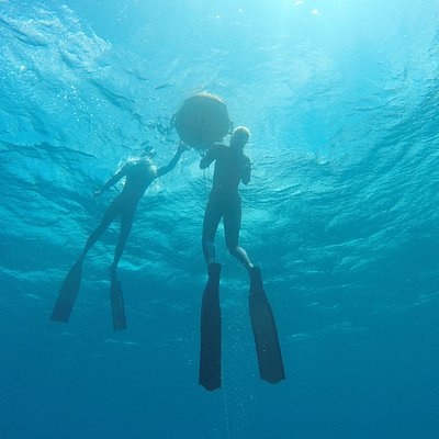 Practicing freediving from the buoy.