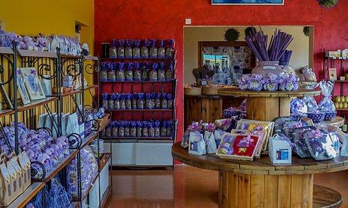 la boutique Terraroma