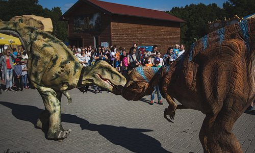 An astonishing battle between our dinosaurs, come and see it alive!