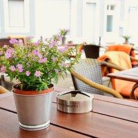 Bei sommerlichen Temperaturen ist es auf unserer Terrasse besonders schön
