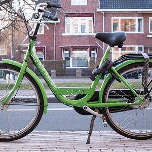 Bike Rent Haarlem Premium Green Bike