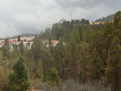 the view over Vilaflor
