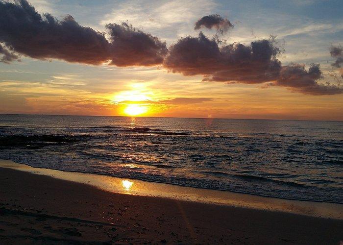 spiaggia lido conchiglie