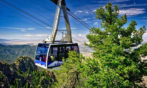 Beautiful Summer Tram Car