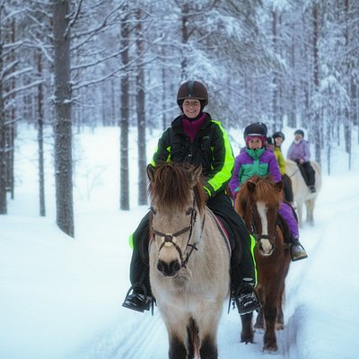 Trail riding in arctic vilderness
