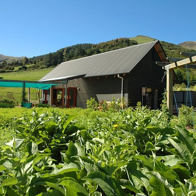 Phytofarm herbal learning garden is located in the beautiful Okuti Valley.