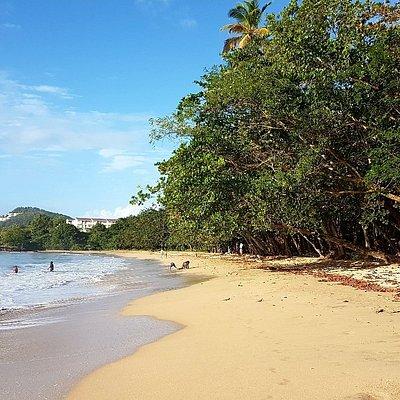 Choc Bay