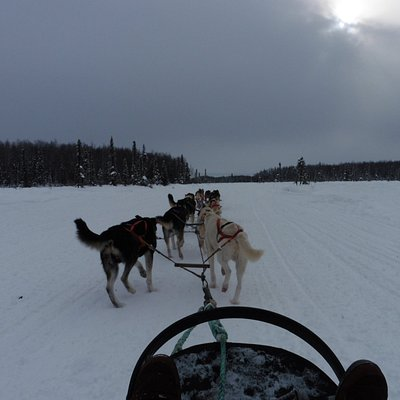 View seated in the sled