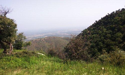 Hill Top, RG