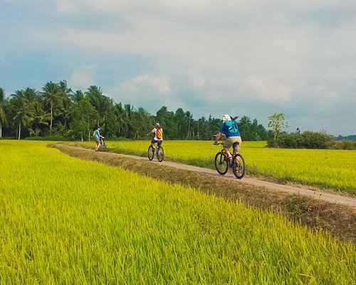 Cycling time in Mekong Delta homestay tour of Innoviet