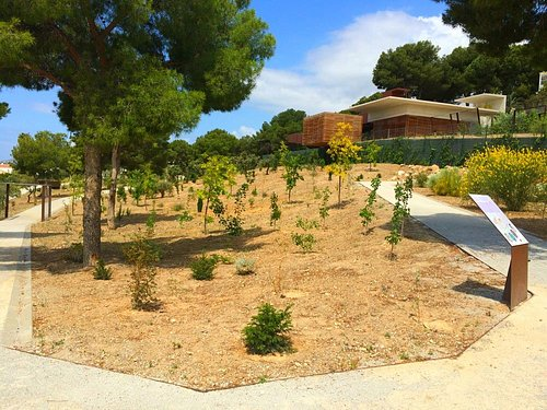 El sendero del jardín discurre sin grandes desniveles y es accesible para todas las personas.