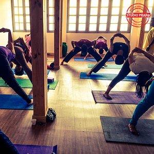 Studio Prana Yoga | Sivananda yoga classes