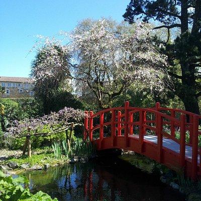 Jardin Botanique de Bayonne