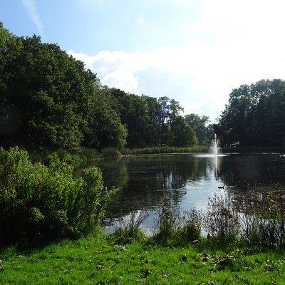 Leidse Hout-Wandelpark Kasteel Poelgeest(sept 2017)