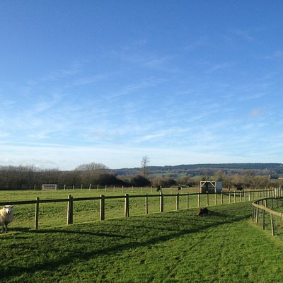 Views out across the fields towards the river Severn