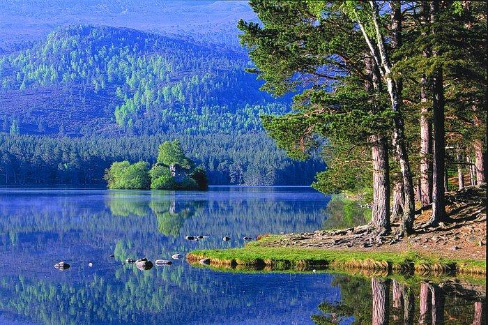 Loch an Eilein caste from the shore