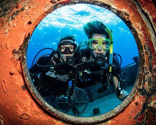 Diving the Kittiwake Wreck