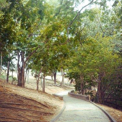Caminhos do Parque Ary Barroso
