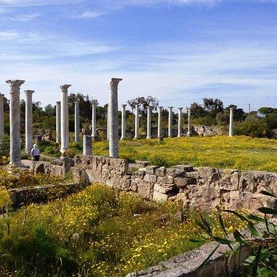 Salamis's Gymnasium.& exercise area.