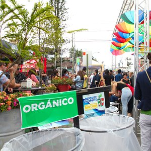 6to Festival Paseo Gastronomico La Luz